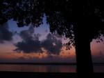 Before sunrise, Crooked Tree